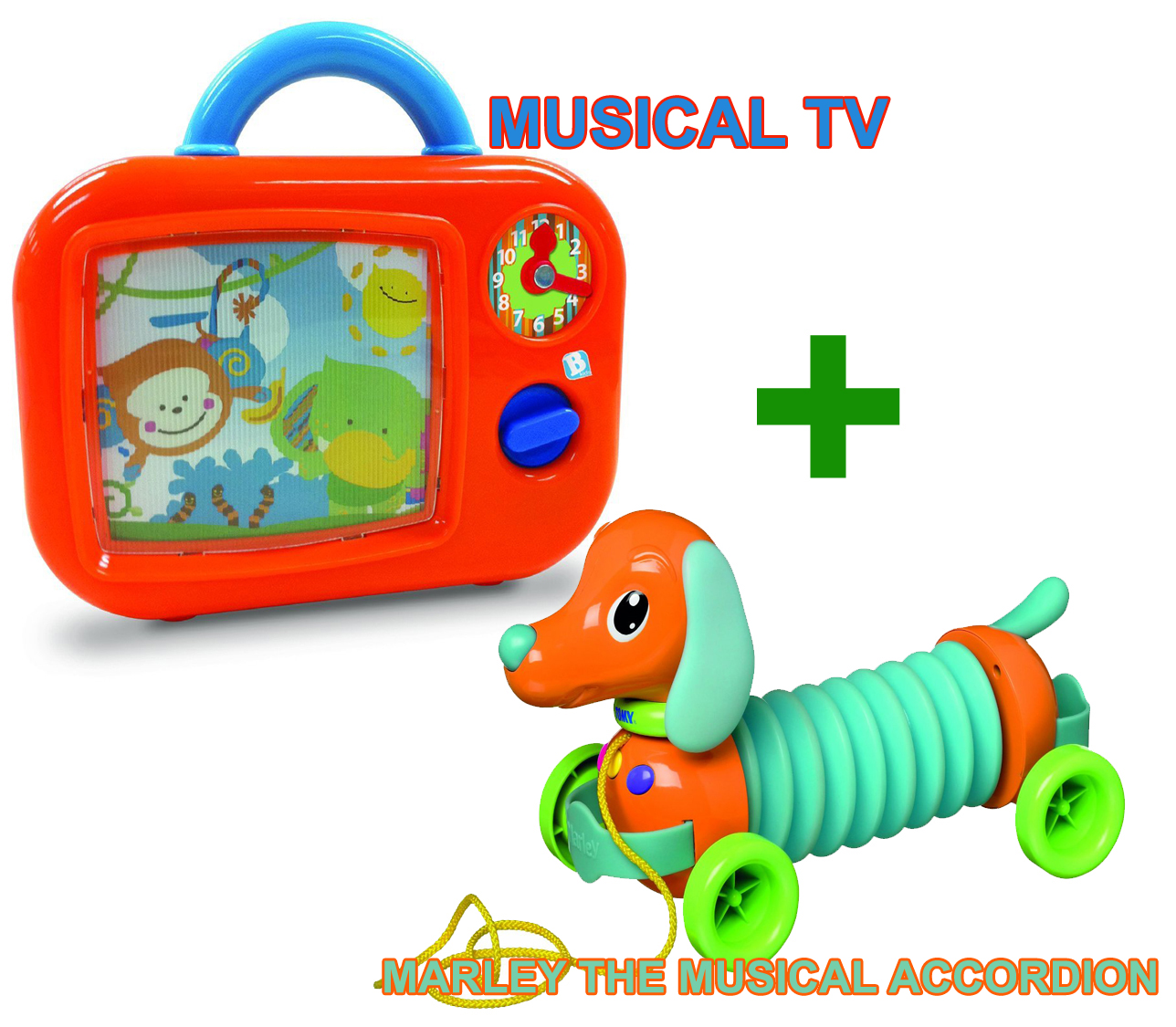 Marley The Musical Accordion and Musical TV