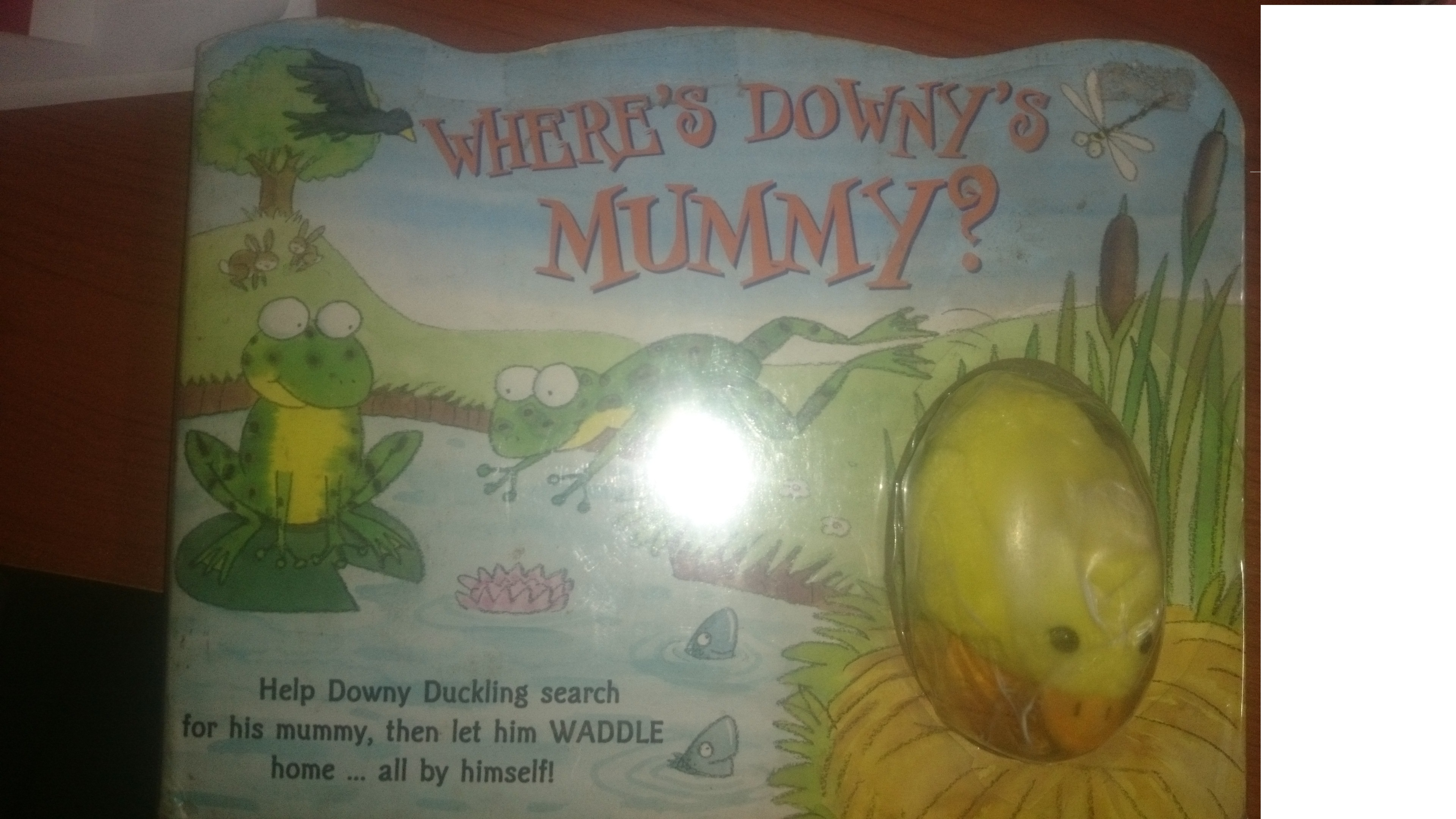 Where's Downy's Mummy?