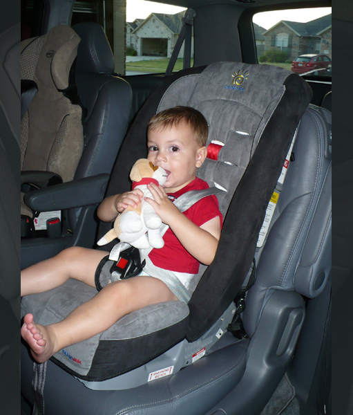 Car Seats & Carrier